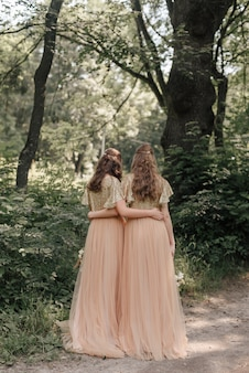 Bruidsmeisjes in prachtige jurken in het park