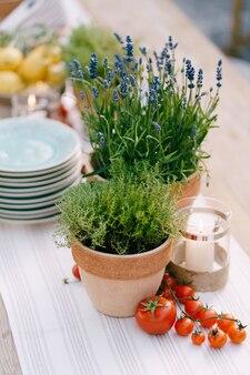 Bruiloft diner tafel receptie