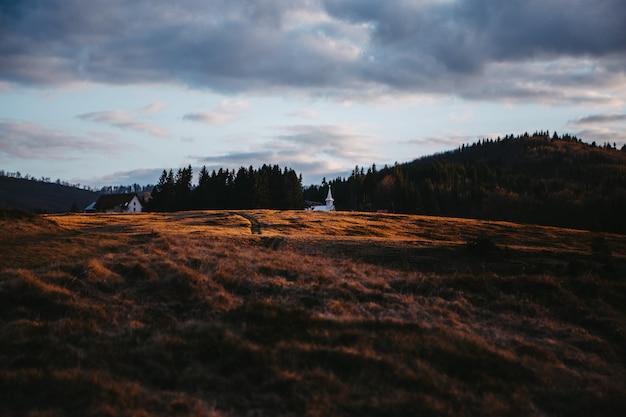 Bruin grasveld onder bewolkte hemel overdag
