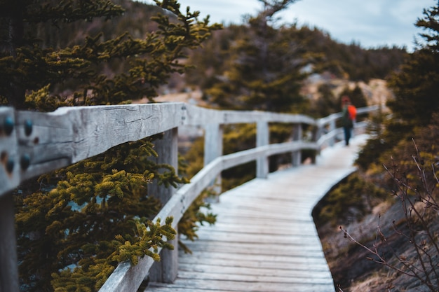 Bruin houten brug over de rivier