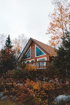 Bruin huis omgeven door bomen overdag