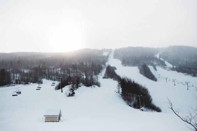 Bruin huis op sneeuw behandelde grond dichtbij bomen overdag