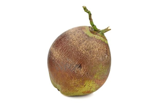 Bruin oud kokosfruit dat op witte achtergrond wordt geïsoleerd