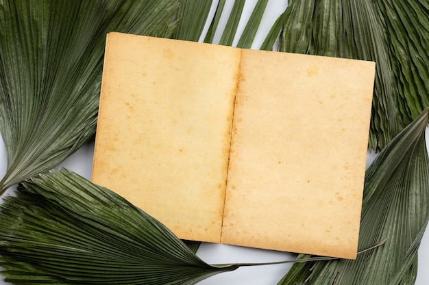 Bruin oud vintage paginadocument op tropische palm droge bladeren