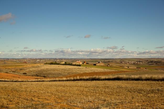 Bruin veld onder de blauwe lucht overdag