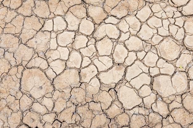 Bruine droge grond of de gebarsten achtergrond van de grondtextuur.