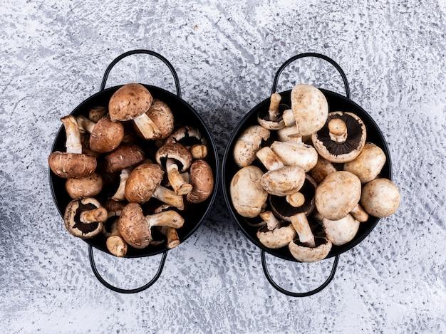 Bruine en witte champignons elk in een pot