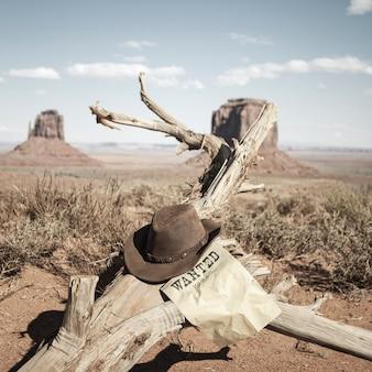 Bruine hoed voor monument valley, vs.