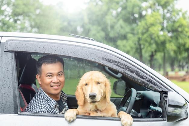 Bruine hond (golden retriever) zit in de auto op de regendag. reizen met dierenconcept