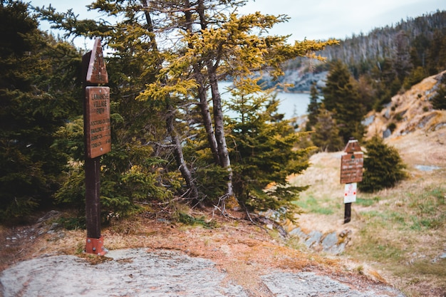 Bruine houten signage dichtbij groene bomen overdag
