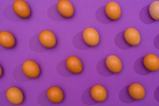 Bruine kippeneieren die op purpere lijst worden verspreid