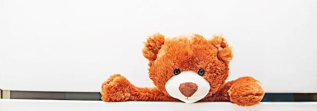 Bruine knuffel teddybeer kruipt uit de kast met witte lades