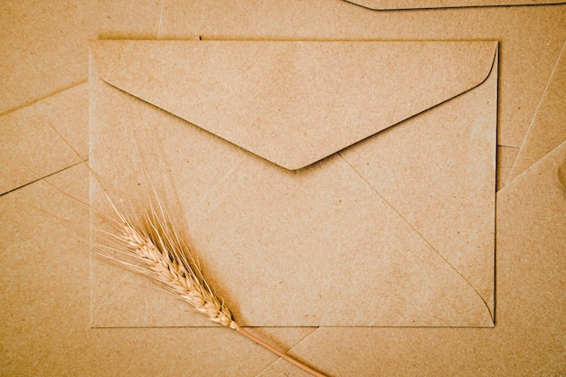 Bruine papieren envelop met gerst droge bloem. close-up van craft envelop. platliggend minimalisme.