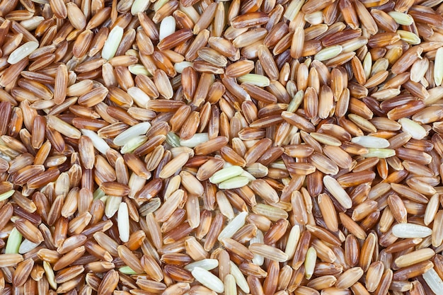 Bruine rijst bessen achtergrond.