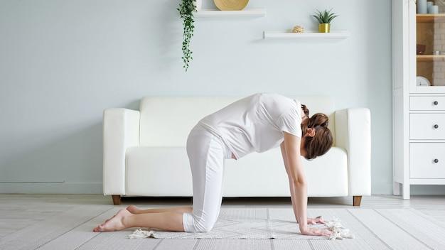 Brunette jonge zwangere dame doet marjaryasana yoga-positie beoefenen op vloerkleed in de buurt van bank in ruime kamer thuis zijaanzicht