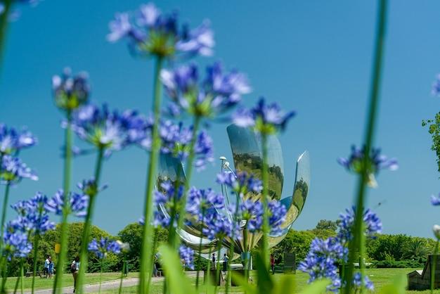 Buenos aires argentinië floralis generica ook bekend als metalen bloem