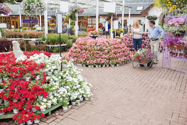 Buiten een tuincentrum met veel soorten planten en bloemen