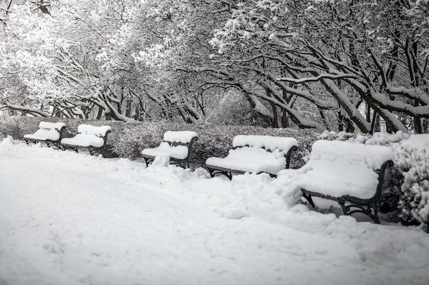 Buitenopname van rij banken in park bedekt met sneeuw
