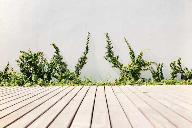 Buitentuin met houten vlonders en klittenbandplanten