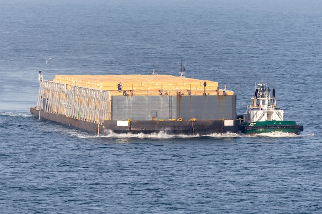 Bulk-vrachtschip met lopende houtlading op dek