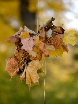 Bundel droge bladeren die aan een touw hangen verbonden