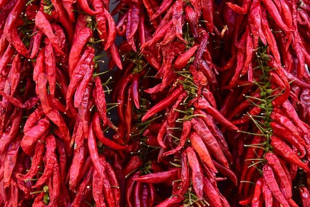 Bundels van gedroogde roodgloeiende chilipepers.