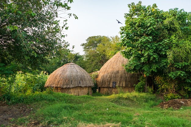 Bungalows op het platteland