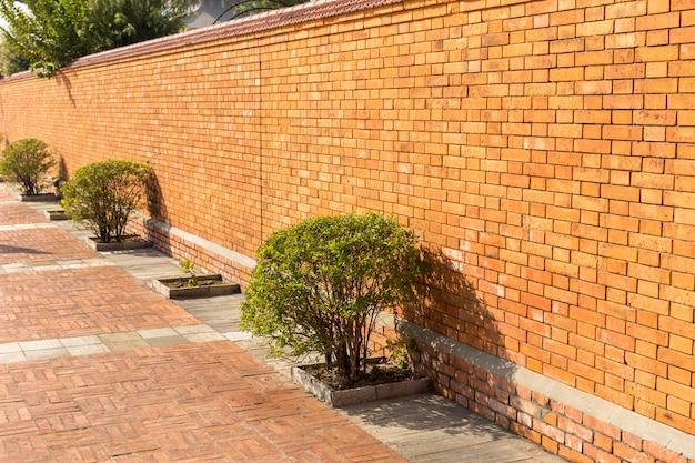 Bush en de rode bakstenen muur