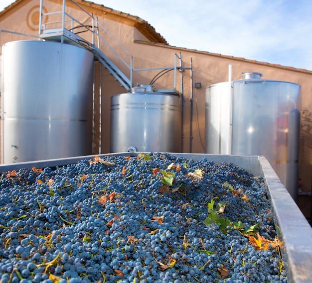 Cabernet sauvignon wijnmaken met druiven en tanks