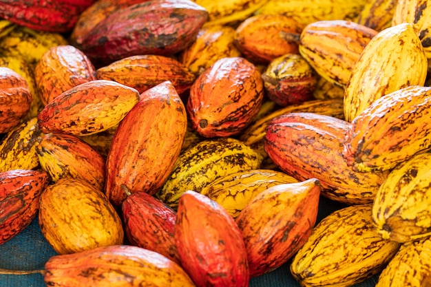 Cacaobonen en cacaopeul op een houten oppervlak