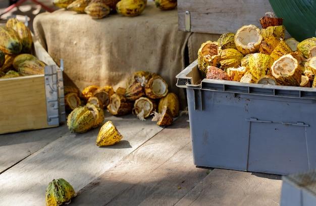 Cacaobonen en cacaopeul op een houten oppervlak.