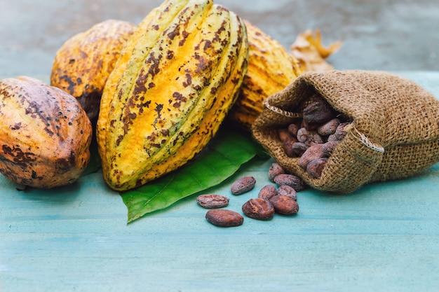 Cacaobonen en cacaopeul