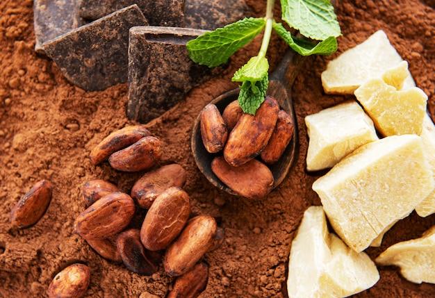 Cacaobonen en cacaopoeder