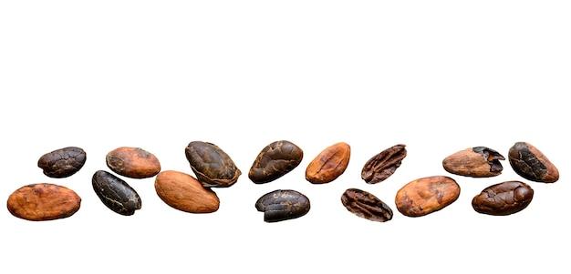 Cacaobonen geïsoleerd op witte achtergrond