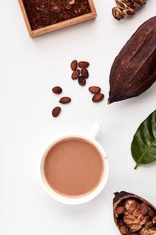 Cacaobonen in peulen op een witte achtergrond