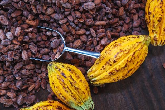 Cacaopeulen en cacaobonen op een houten achtergrond