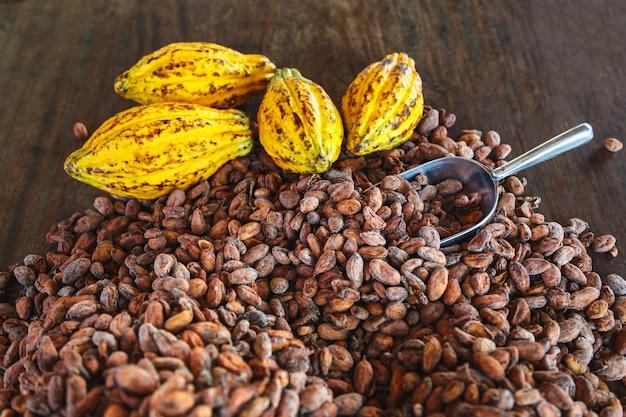 Cacaopeulen en cacaobonen op een houten tafel