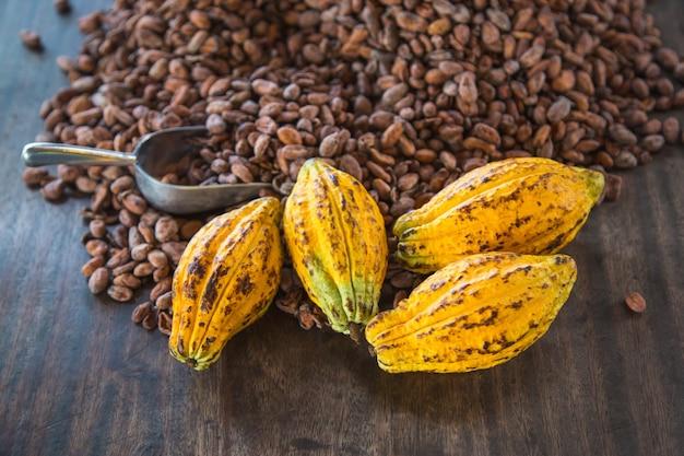 Cacaopeulen en cacaobonen op een houten