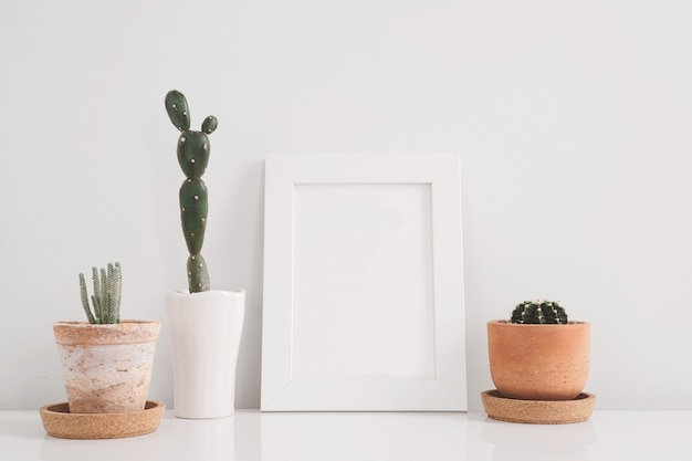 Cactus in kleipotten over witte achtergrond op de plank en spot op kaderfoto.