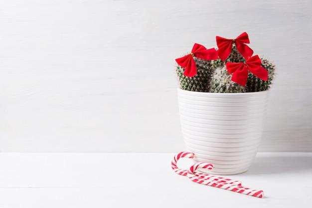 Cactus met kerstversiering, concept van het nieuwe jaar en feestdagen.