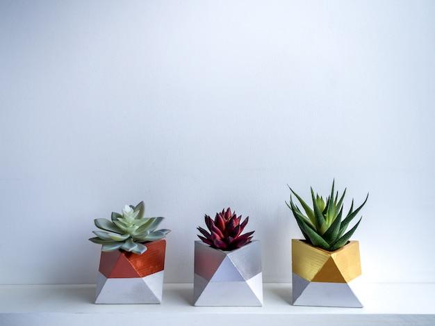 Cactus pot. betonnen pot. moderne geometrische betonnen plantenbak.