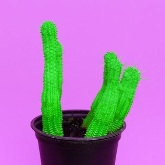 Cactussen in pot. cactus ontwerp mode kleurrijk creatief concept
