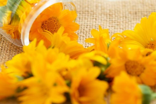 Calendula bloemen in een glazen pot