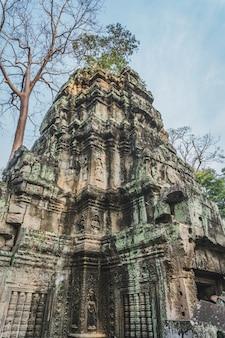 Cambodja angkor wat ta prohm-tempel