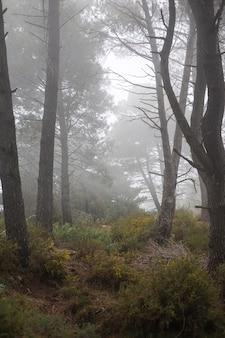 Camper leven concept met wildernis