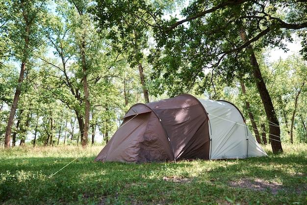 Campingtent in een dennenbos