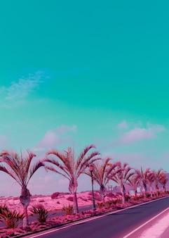 Canarische eilanden. palm minimale kleuren kunst. reisvibes