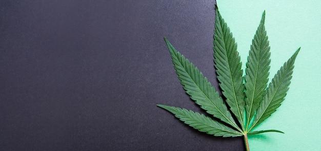 Cannabis bovenaanzicht op papier achtergrond met kopie ruimte