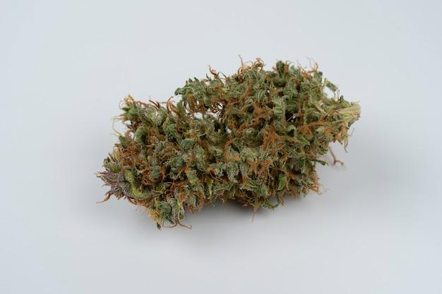 Cannabis bud closeup op witte achtergrond macro marihuana copy space marihuana oogst