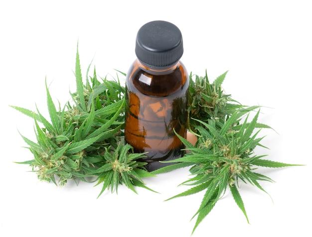 Cannabis met cannabidiol-extract geïsoleerd